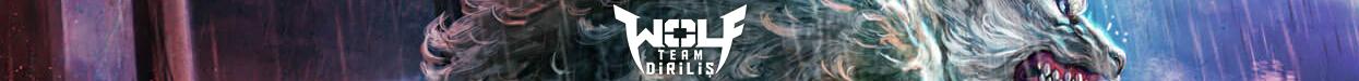 WolfTeam - Joygame (Türkçe)